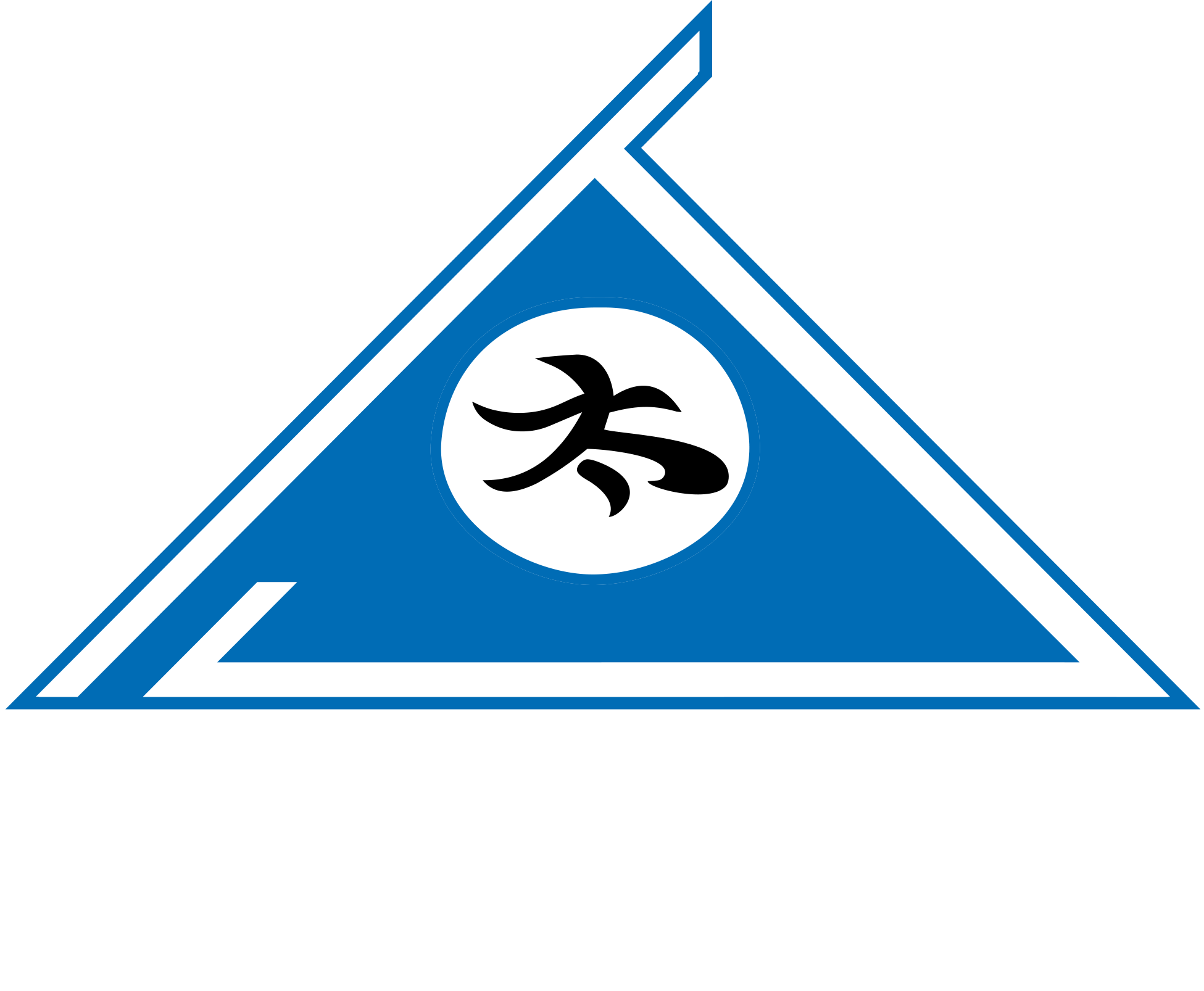 World Championship Martial Arts